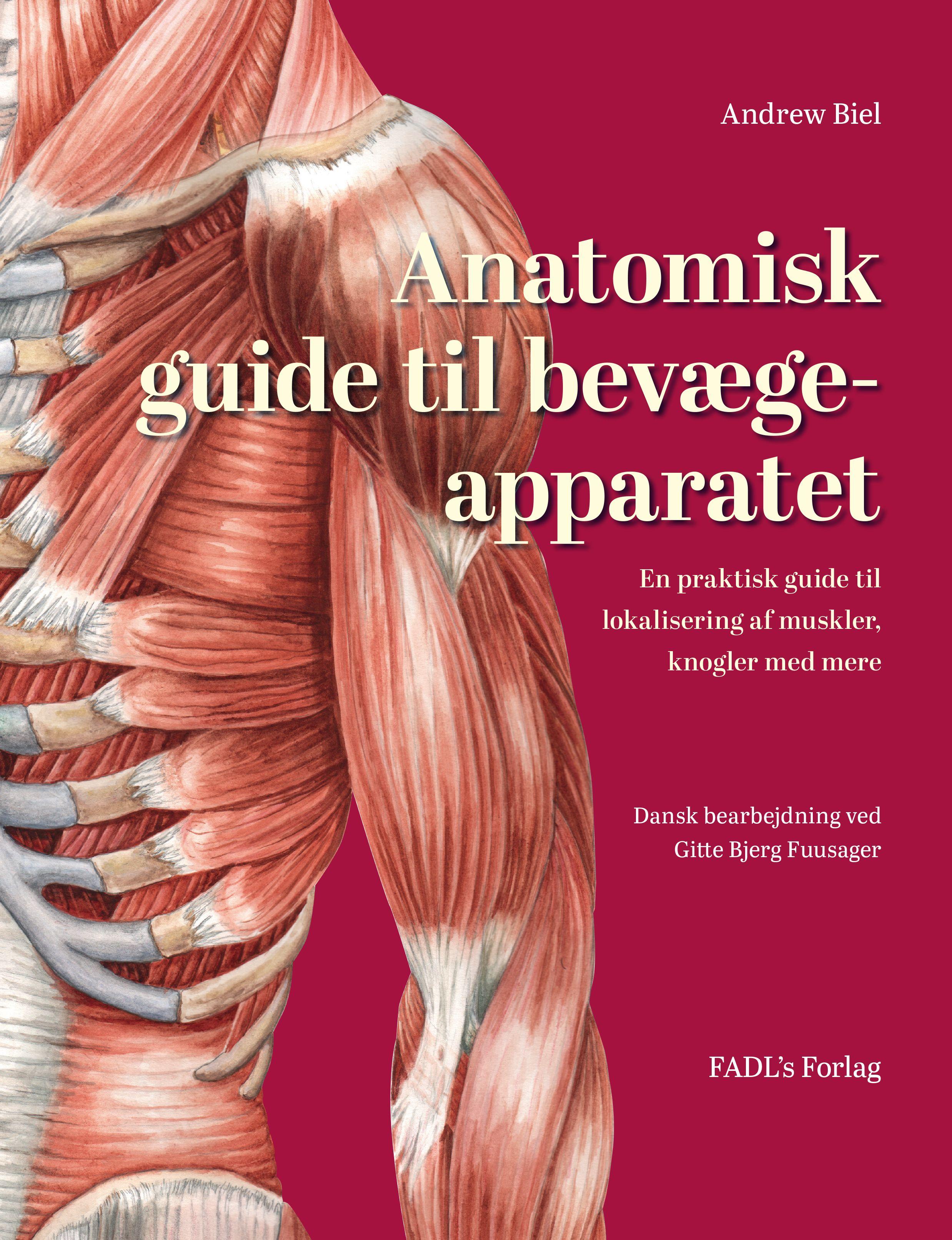 Anatomisk guide til bevægeapparatet