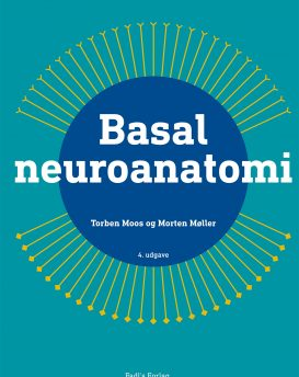 Basal neuroanatomi